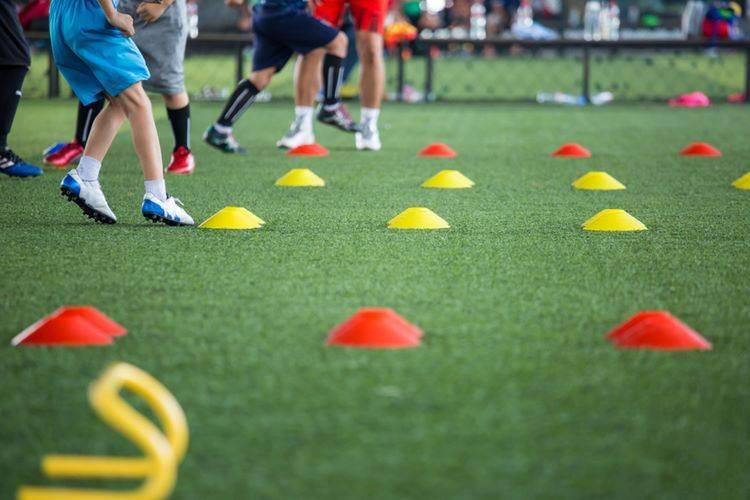 Preparador físico y nutrición especialista en preparación física de futbolistas     online